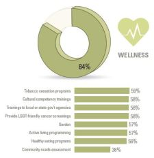 WellnessGraphic