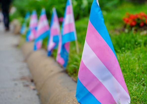 TransFlags