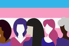TransphobiaFlag.JPG